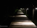IMG_1244-pathway-at-night
