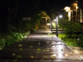 IMG_1248-pathway-at-night-3