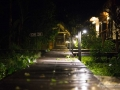 IMG_1249-pathway-at-night-4