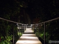 IMG_1256-walkway-at-night