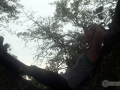 IMG_1854-SARA-KAROK-TREE-300FT-YAWN